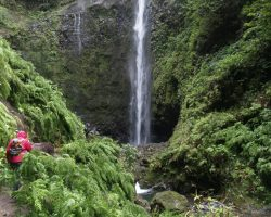 Top hiking spots in Madeira