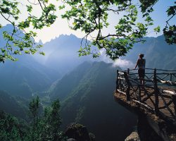 7 Reasons To Visit Madeira Island In 2018